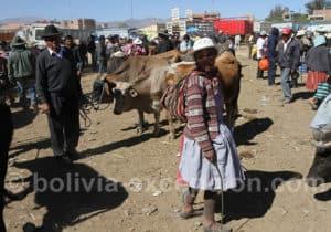 Les marchés traditionnels de la vallée de Cochabamba