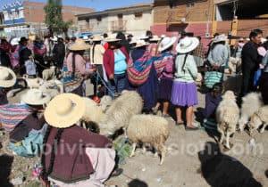 Les chapeaux de Cochabamba
