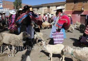 Visite de Punata, vallée de Cochabamba