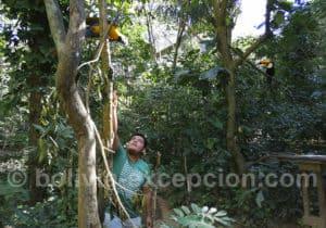 Visite du Güembé Biocentro