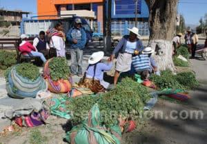 Vente de fourrage pour les animaux, Punata