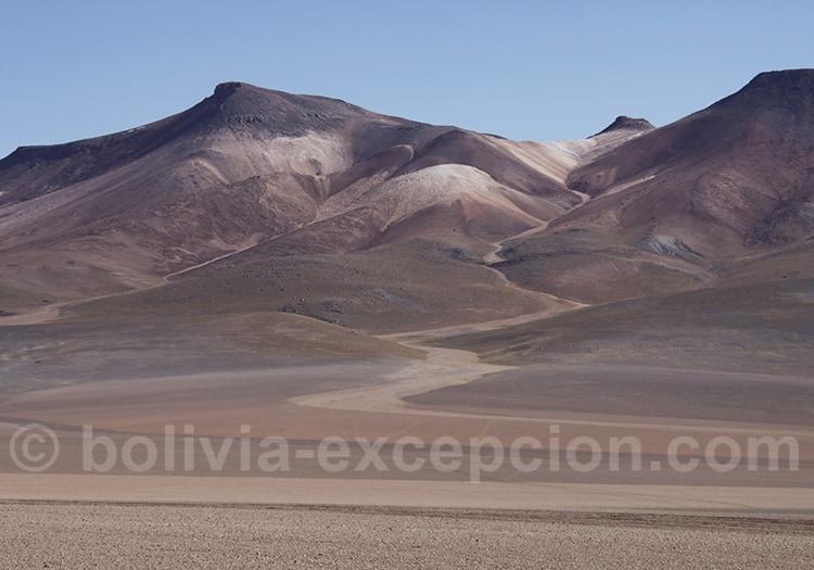 Réserve Eduardo Avaroa, Siloli