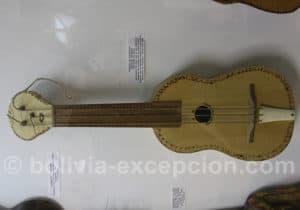 Guitare Guaraya, Amazonie