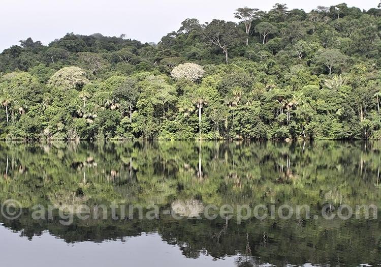 Le climat dans le Beni