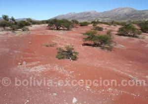 Paysages d'Anzaldo, Bolivie