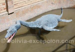 Plesiosaur parc Orcko