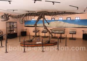 Pterosaur parc Orcko