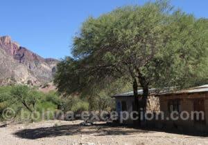 Alentours du village d'Anzaldo