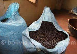 Visite d'une fabrique de café, Santa Cruz, Bolivie