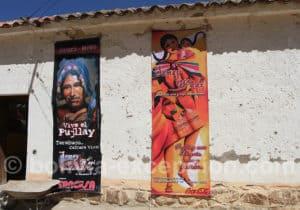 Vive el Pujllay