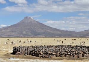 Volcan Tata Sabaya