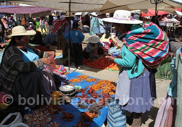Bagages pour aller en Bolivie