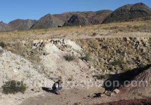 Coelurosaure Carreras Pampas, Torotoro
