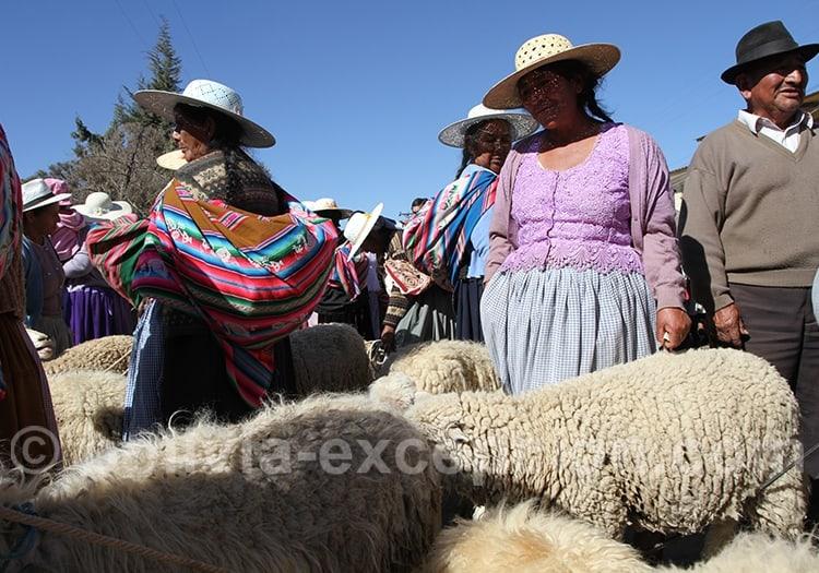 Les machés de Cochabamba incontournables de Bolivie
