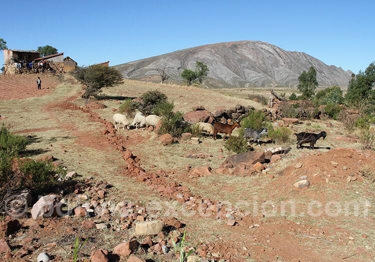 Meteo dans les Andes boliviennes en mai