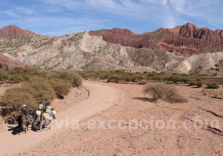 Promenade équestre dans la vallée Los Machos, Tupiza