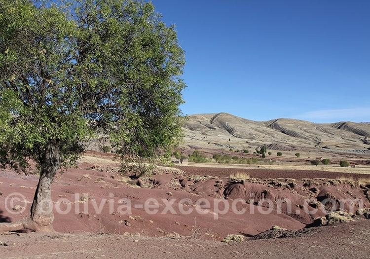 Visite de Maragua en décembre