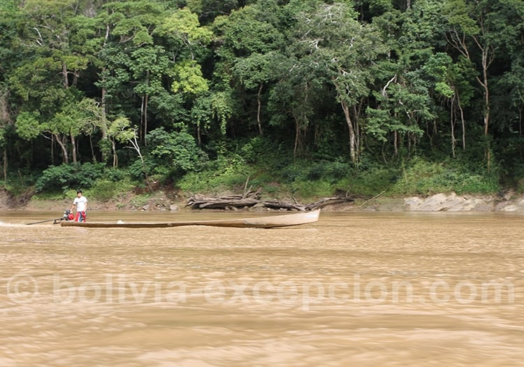 Voyager en Amazonie en avril