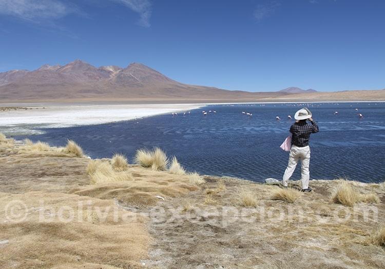 Voyager en Bolivie en aôut