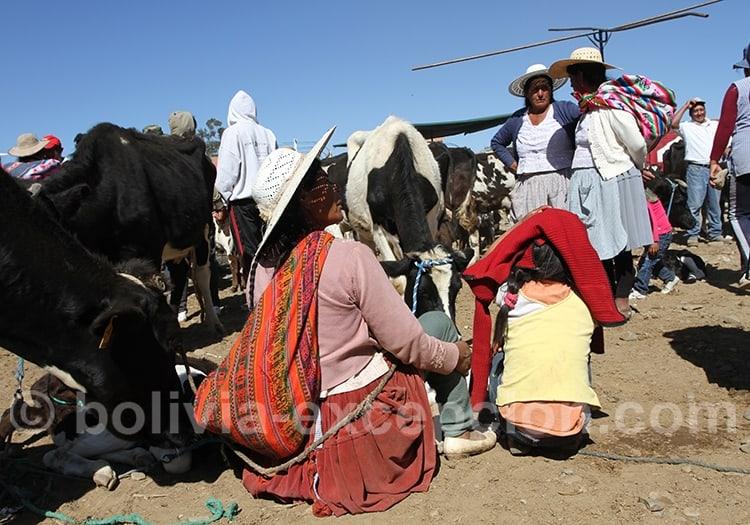 Voyage familial en Bolivie