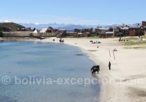 Voyage lac Titaca, isla del Sol