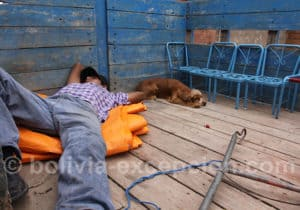 La sieste pour tous à Tarija
