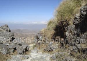 Chemin inca, réserve biologique de la Cordillère de Sama