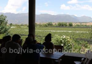 Bodega Casa Vieja, région de Tarija