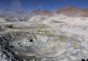 Visite des geysers de Sol de Mañana
