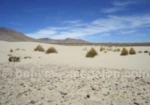 Dunes de sable de la réserve cordillère de Sama