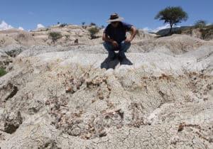 Gisement fossile de Rujero
