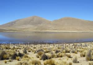 Réserve de Sama, site RAMSAR