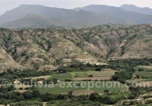 Vallée viticole, région de Tarija